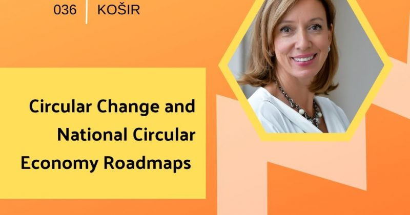 Circular Change and National Circular Economy Roadmaps with Ladeja Godina Košir | Getting in the Loop Podcast